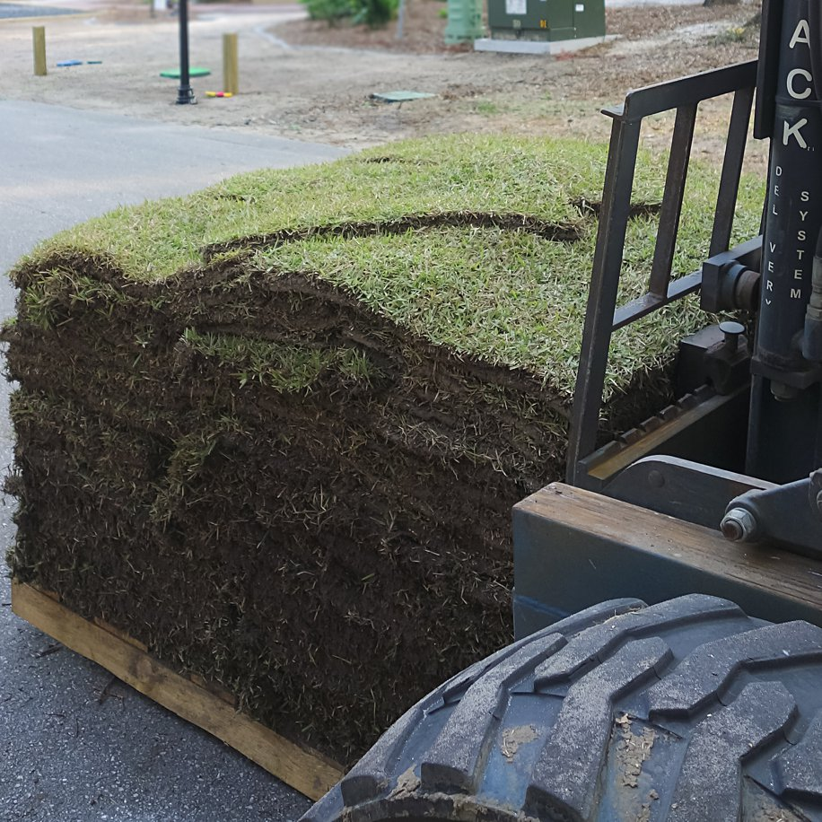 How to Lay Sod to Save Money | DIY 5 step guide | Simply Living NC