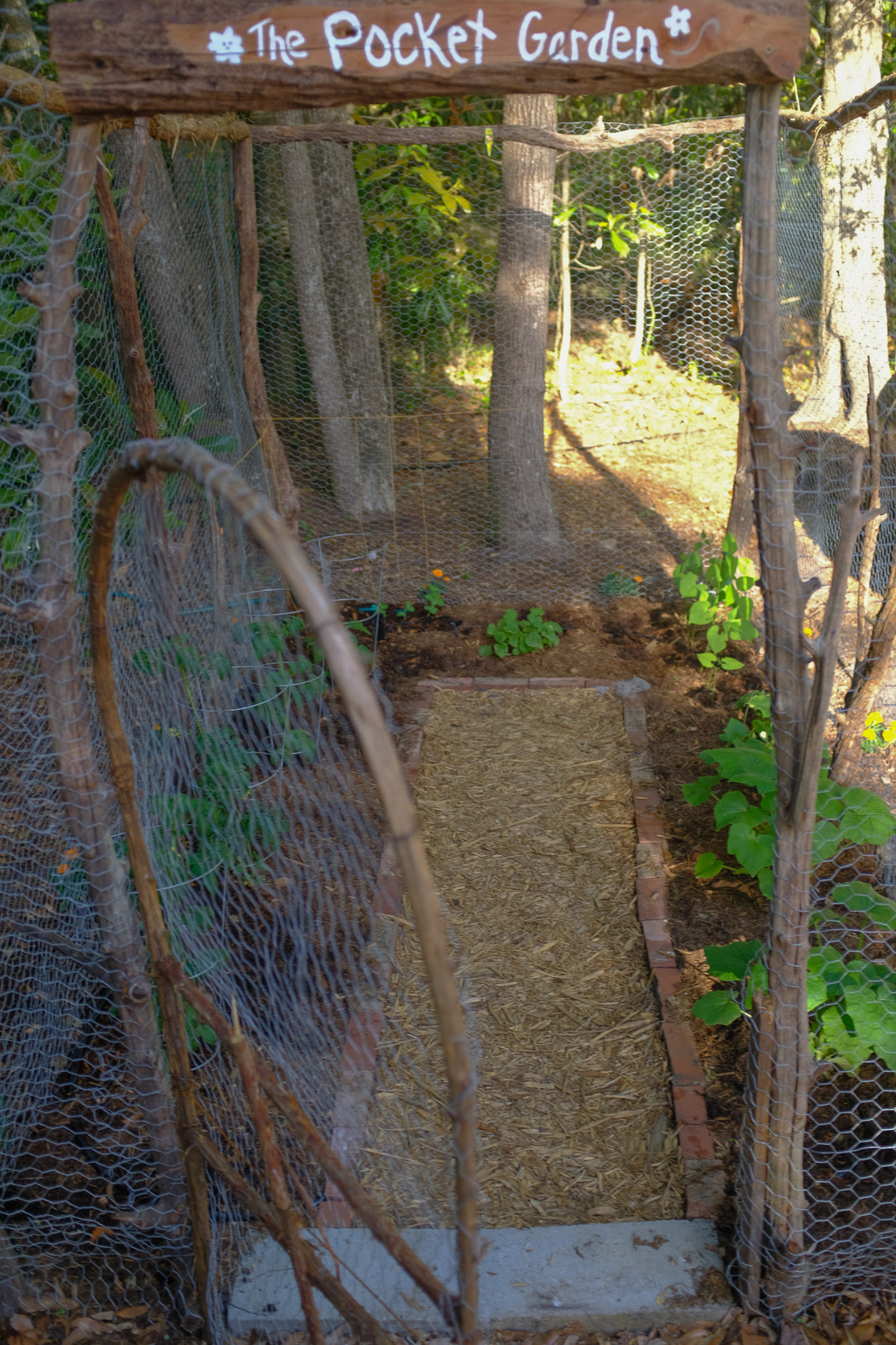 How To Build a Rustic Deer Resistant Small Vegetable Garden    Simply Living NC
