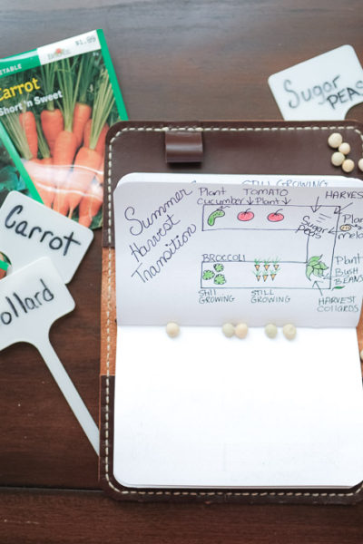 Vegetable Garden Planning Made Easy in a Small Space with Bonus Garden Pest Spray   Simply Living NC