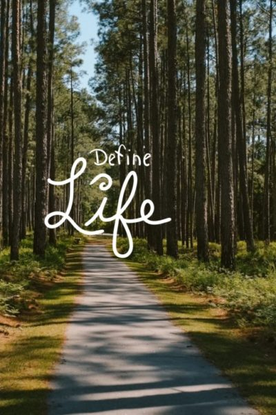 define LIFE; a blog about life