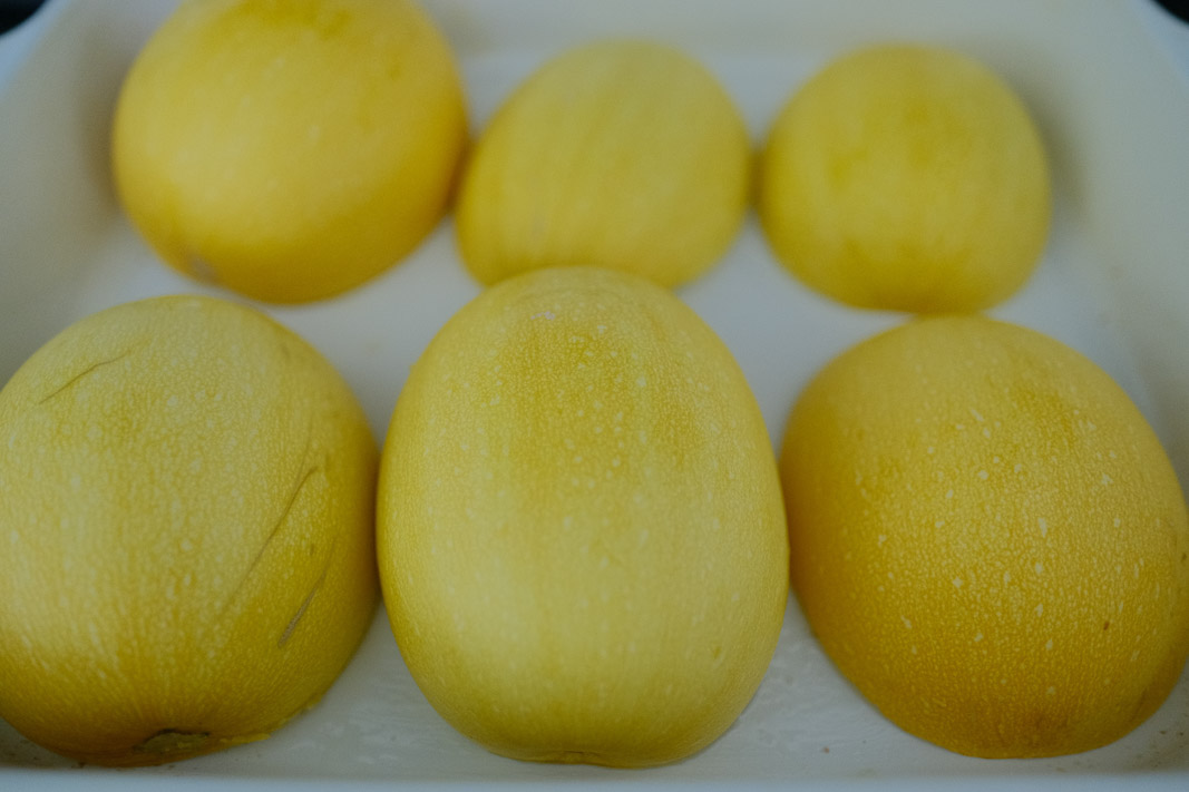 Spaghetti Squash; Small Wonder Winter Squash, How to Harvest, Bake, Cook & Eat; grow your own food